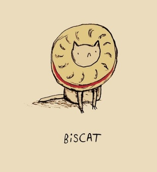 biscat---small_502