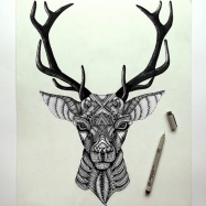 amazing_detailed_animal_doodles_created_by_artist_faye_halliday_2015_04
