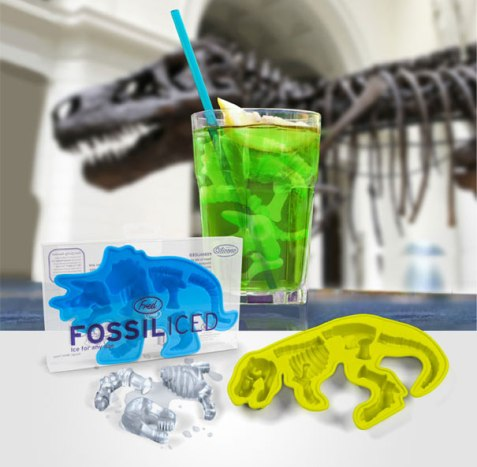 creative-ice-cube-trays-1