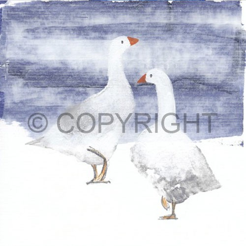 2geese
