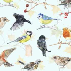 autumn-birds-web-_900