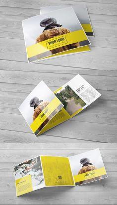 d2a75ba56a721d56a6544fbebb9295fb--brochure-design-inspiration-creative-brochure-design